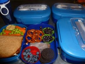 My big lunch boxplans