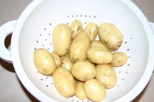 Yesterday's potato harvest
