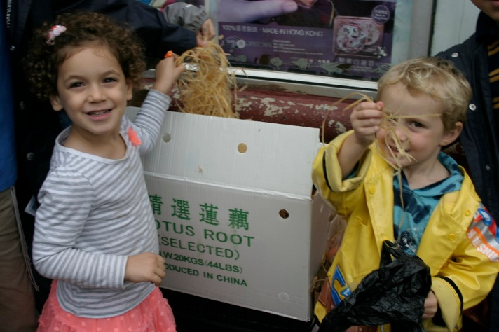 Every 3-year-old should be able to identify Lotus root.